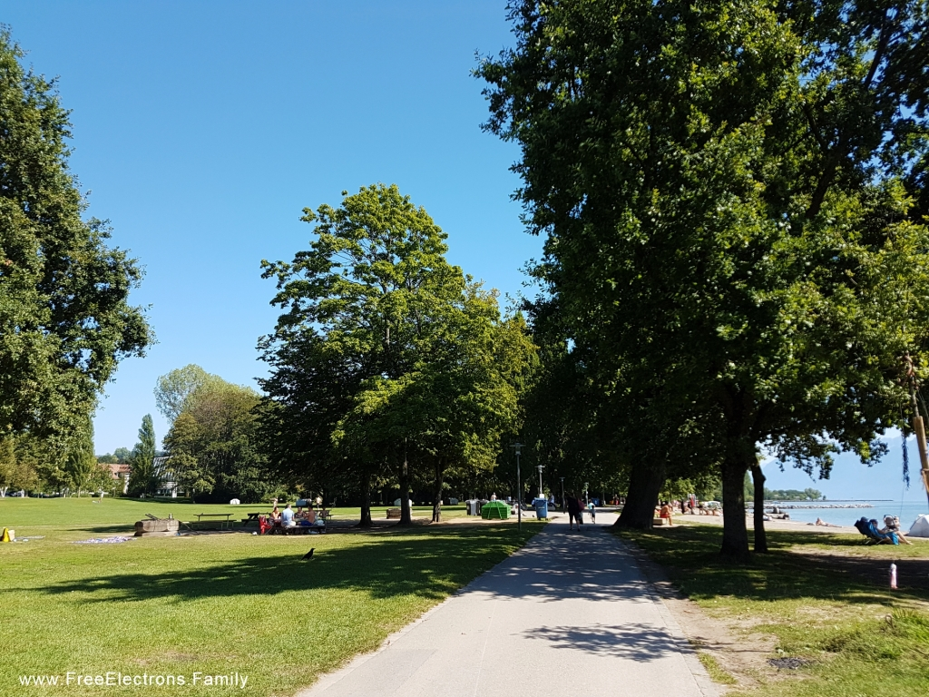 Wide open green space, shadeful trees and a paved road at Louis Bourget Park on Lake Geneva, Lausanne, Switzerland.  www.FreeElectrons.Family