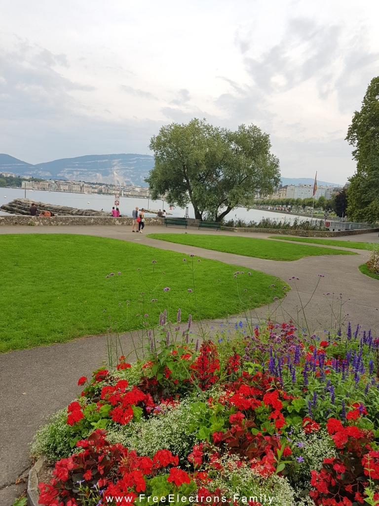 Flowers in bloom in the foreground with verdant mowed lawn of a park and Geneva's lakeshore and the mountains in the background.