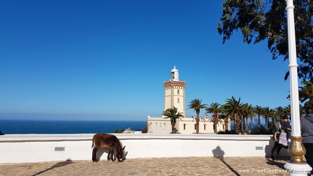 A donkey on a terrace with a lighthouse in the background under clear blue sky.